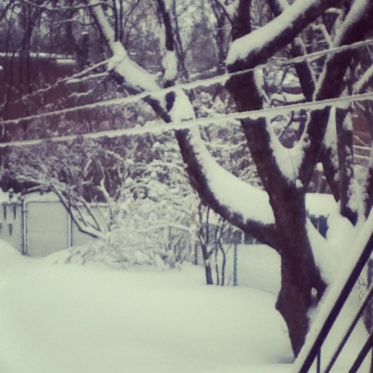 Catharine ask : What is your best and worst memories of winter ?